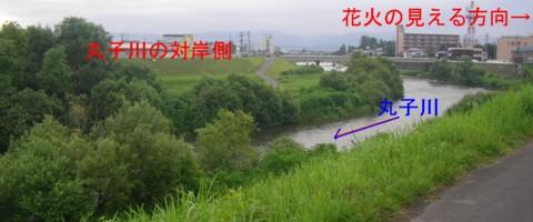 普段の丸子川の対岸側の様子